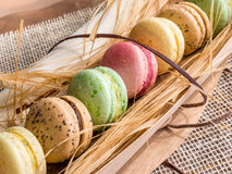 Macaroon cookies Stock Photo
