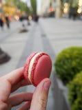 Macaroon cor-de-rosa Fotos de Stock Royalty Free