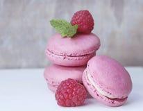 Macaroon, Dessert, Sweetness, Berry Stock Photo