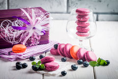 macaroon with fresh  blueberries Royalty Free Stock Photography
