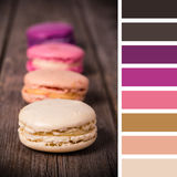 Macaroon palette Stock Photography