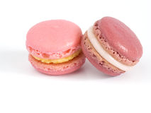 Macaroon. Pink Macaroons on white background Royalty Free Stock Photos