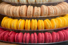 Macaroon sweet treats Royalty Free Stock Image