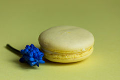 Macaroon traditional Parisian cookie Stock Photo