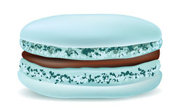 Macaroon on a white background. Vector object. Royalty Free Stock Image