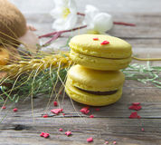 Macaroon. On the wooden floor Royalty Free Stock Photos