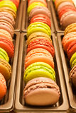 Macaroon04 Stock Photos