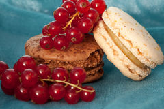 Macaroons with berries Royalty Free Stock Photo