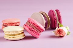 Macaroons cake close up in pastel colors stock images
