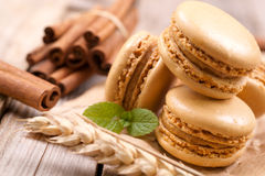 Macaroons with cinnamon sticks Stock Image