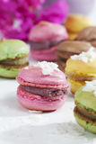 Macaroons with coconut flakes Royalty Free Stock Photography