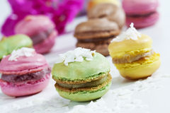 Macaroons with coconut flakes Royalty Free Stock Photo