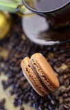 Macaroons with coffee taste Royalty Free Stock Photo