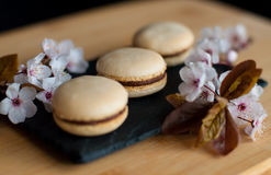 Macaroons decorated with flowers Stock Image