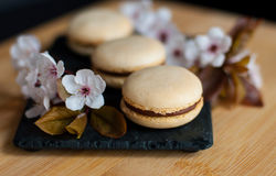 Macaroons decorated with flowers Stock Photos