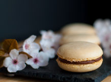 Macaroons decorated with flowers Royalty Free Stock Photo