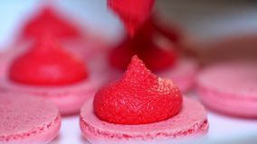 Macaroons - delicious and beautiful french dessert. Making pink macarons, squeezing and adding cream filling from pastry. Bag. Cooking, food and baking, pastry stock video footage