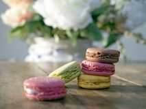 Macaroons four different colors and flavours royalty free stock photography