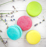 Macaroons with lavander Royalty Free Stock Photo