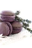 Macaroons with lavender and cream with black curra Royalty Free Stock Image