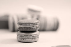 Macaroons in line Royalty Free Stock Image