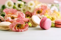 Macaroons in pastel colors with flowers on a pale pink background. Holiday background royalty free stock photos
