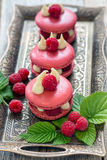 Macaroons with raspberries. Stock Photography