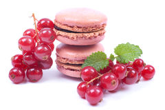 Macaroons with redcurrant Stock Photos