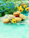 Macaroons with spring flowers Royalty Free Stock Images