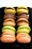 Macaroons in the studio Royalty Free Stock Photography