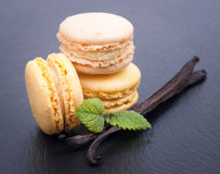 Macaroons with vanilla beans Stock Photo