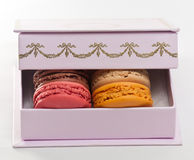 Macaroons on a violet box Royalty Free Stock Photo