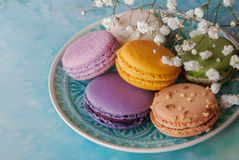 Macaroons with white flowers Royalty Free Stock Photography