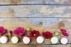Macaroons on a wooden background Stock Photography