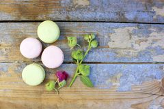 Macaroons on a wooden background Royalty Free Stock Photo