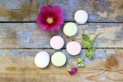Macaroons on a wooden background Stock Photos