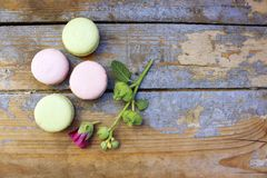 Macaroons on a wooden background Stock Image