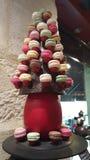 Macarron bordowie czekoladowi Zdjęcie Stock