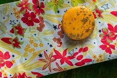 Macarrones anaranjados en un mantel florecido foto de archivo libre de regalías