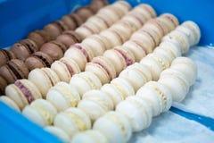 Macarrones chocolate y vainilla en una bandeja Imagen de archivo libre de regalías