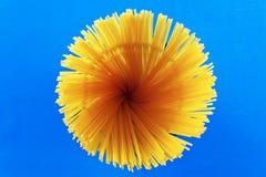 Macarrones crudos de los espaguetis de las pastas en fondo azul Imagen de archivo