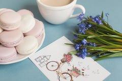 Macarrones suaves dulces en la placa Fotos de archivo libres de regalías