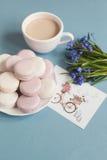 Macarrones suaves dulces en la placa Imagen de archivo libre de regalías