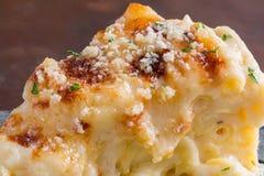 Macarrones y queso cocidos al horno Imágenes de archivo libres de regalías
