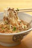 Macarronete fritado picante Imagem de Stock