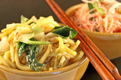 Macarronetes asiáticos Imagens de Stock