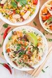Macarronetes com vegetais e verdes, arroz fritado com tofu imagens de stock royalty free