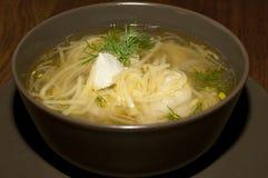 Macarronetes da sopa com galinha imagem de stock royalty free
