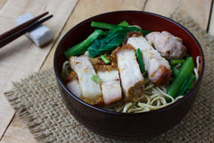 Macarronetes de ovo com vegetais e carne de porco friável, foco da seleção fotos de stock