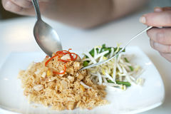 Macarronetes friáveis tailandeses Fotos de Stock